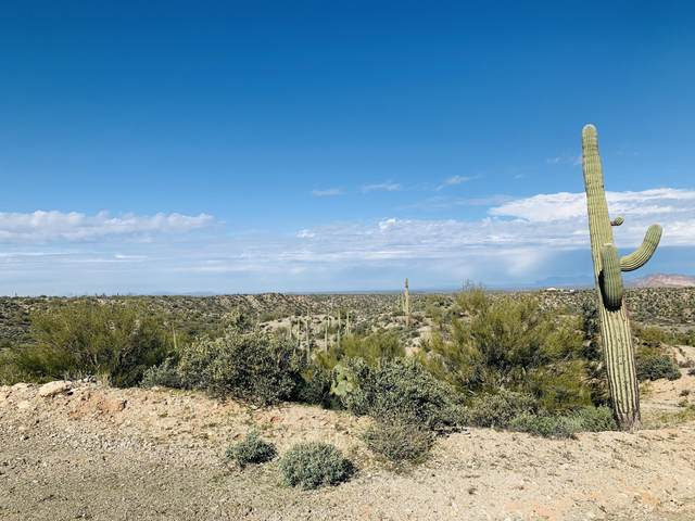 0 N Spotted Horse Trail, Florence, AZ 85132 (MLS #6035324) :: Conway Real Estate