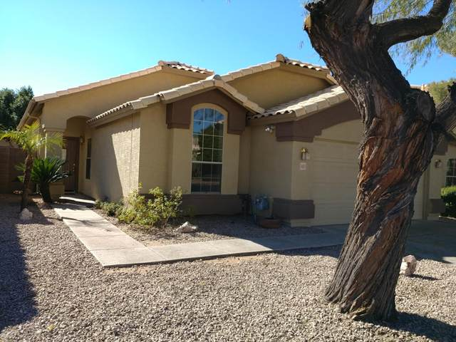 1469 E Comstock Drive, Gilbert, AZ 85296 (MLS #6035328) :: Devor Real Estate Associates