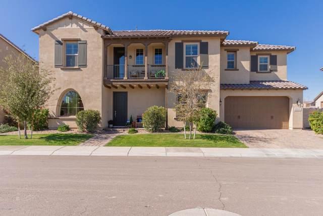 890 W Grand Canyon Drive, Chandler, AZ 85248 (MLS #6035376) :: The Andersen Group
