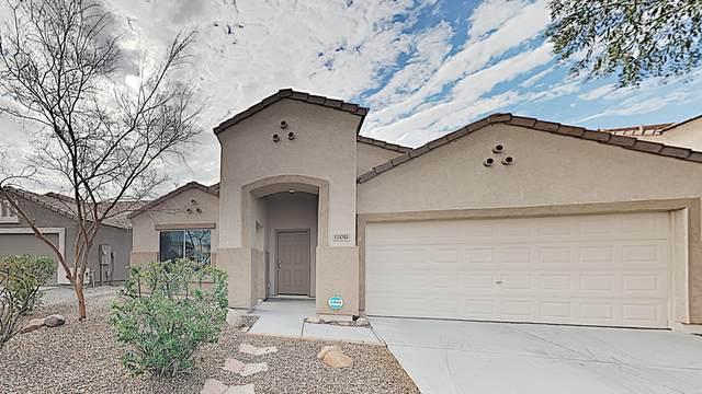 12011 W Salter Drive, Sun City, AZ 85373 (MLS #6035568) :: Brett Tanner Home Selling Team