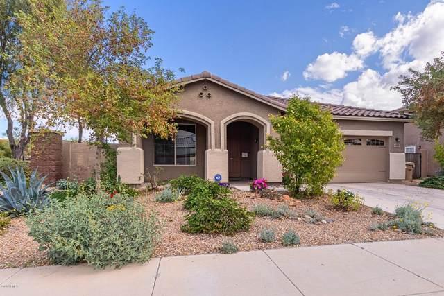 4201 N 155TH Drive, Goodyear, AZ 85395 (MLS #6035616) :: REMAX Professionals