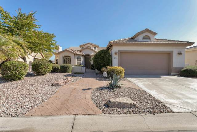 3549 N 149TH Avenue, Goodyear, AZ 85395 (MLS #6035713) :: Devor Real Estate Associates