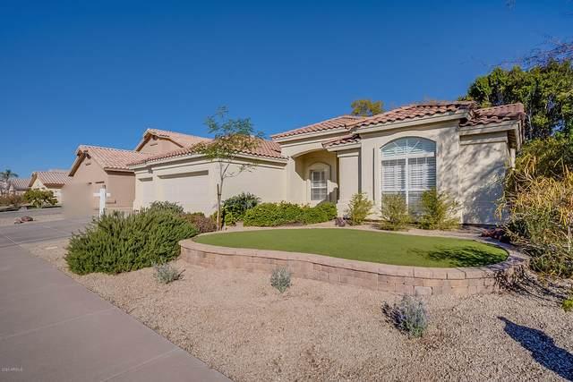 2802 W Jasper Drive, Chandler, AZ 85224 (MLS #6035729) :: The W Group