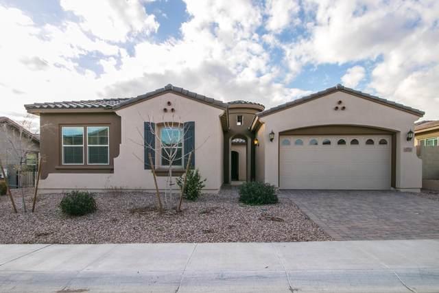 13775 W Sarano Terrace, Litchfield Park, AZ 85340 (MLS #6035732) :: Conway Real Estate