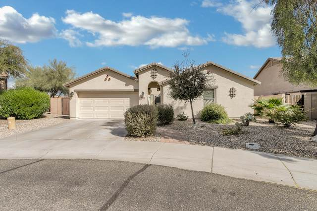 3311 S 256TH Drive, Buckeye, AZ 85326 (MLS #6035771) :: Howe Realty