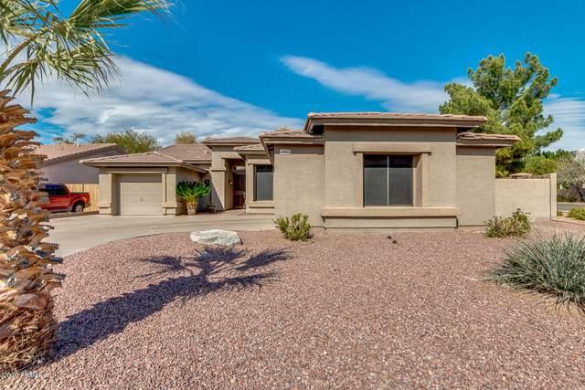6906 W Abraham Lane, Glendale, AZ 85308 (MLS #6035795) :: Conway Real Estate