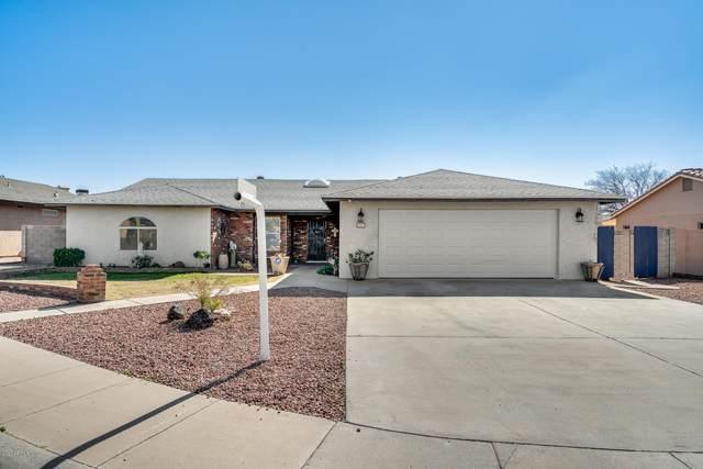 8223 W Poinsettia Drive, Peoria, AZ 85345 (MLS #6035824) :: Nate Martinez Team