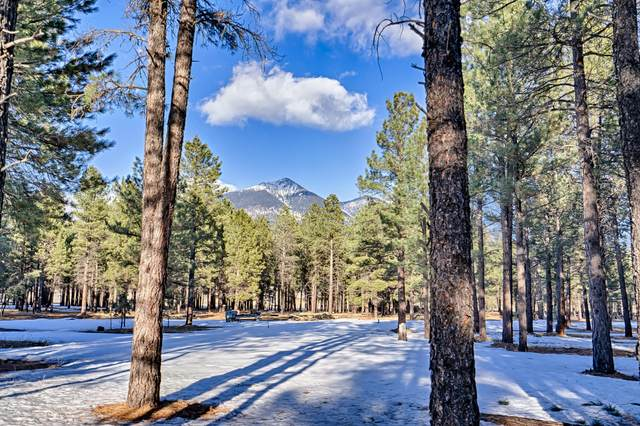 8400 N Roundtree Road, Flagstaff, AZ 86001 (MLS #6035948) :: Riddle Realty Group - Keller Williams Arizona Realty