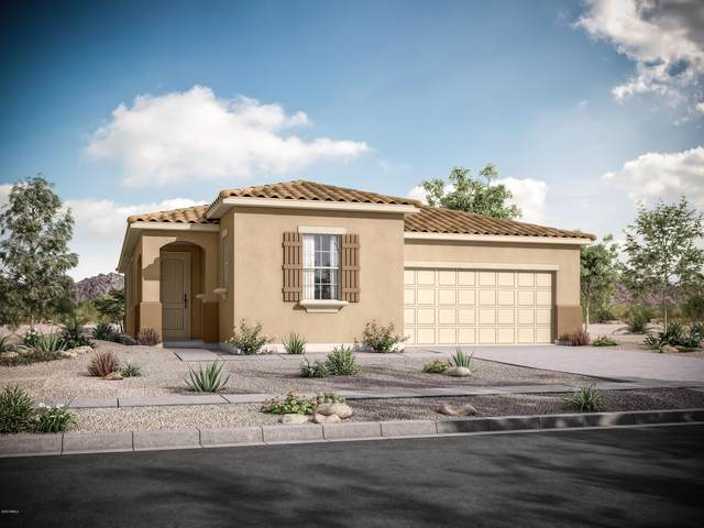 605 N 108th Avenue, Avondale, AZ 85323 (MLS #6035979) :: Devor Real Estate Associates