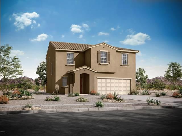 10834 W King Street, Avondale, AZ 85323 (MLS #6035981) :: Devor Real Estate Associates