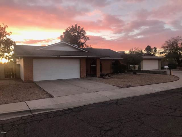 5638 W Greenbriar Drive, Glendale, AZ 85308 (MLS #6036055) :: Yost Realty Group at RE/MAX Casa Grande