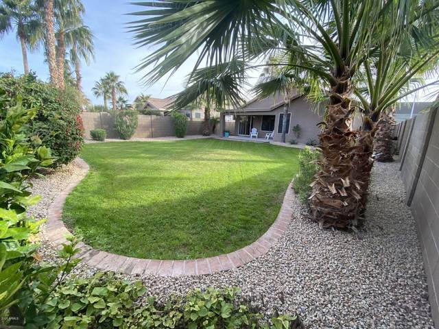 2422 E Cottonwood Lane, Phoenix, AZ 85048 (MLS #6036109) :: My Home Group