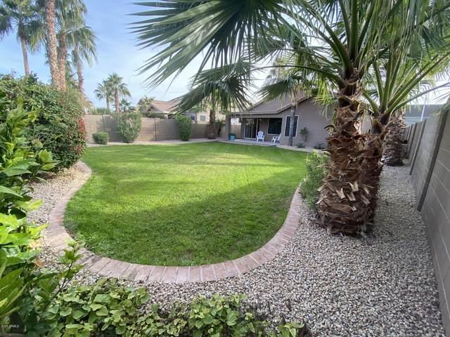 2422 E Cottonwood Lane, Phoenix, AZ 85048 (MLS #6036109) :: Devor Real Estate Associates