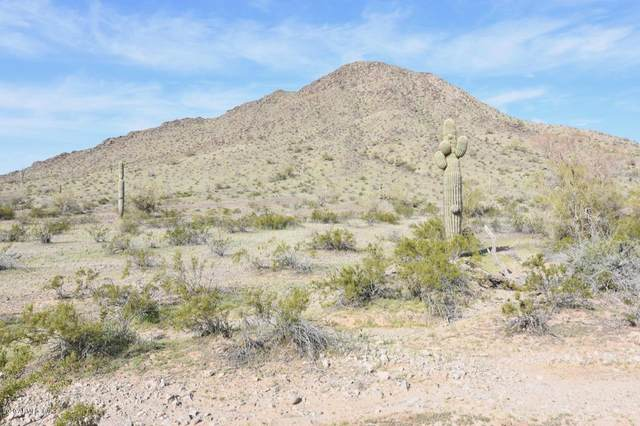 50200 Government Mine Road, Salome, AZ 85348 (MLS #6036124) :: Devor Real Estate Associates