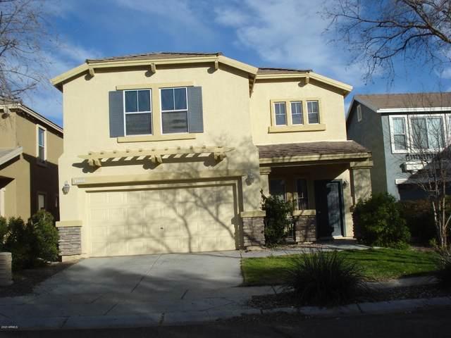 1223 S 120 Avenue, Avondale, AZ 85323 (MLS #6036134) :: Brett Tanner Home Selling Team
