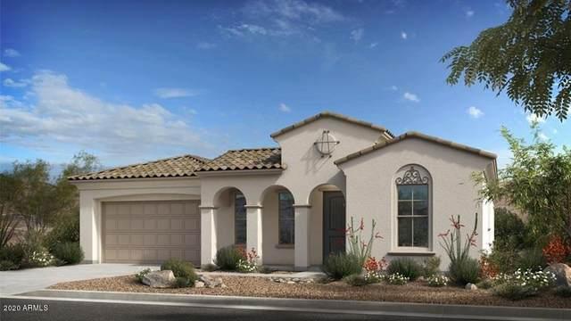 22413 N 30th Way, Phoenix, AZ 85050 (MLS #6036228) :: RE/MAX Excalibur