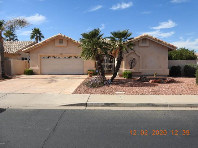17740 N Shawnee Trail, Surprise, AZ 85374 (MLS #6036286) :: CANAM Realty Group