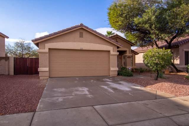 15959 W Tasha Drive, Surprise, AZ 85374 (MLS #6036287) :: Homehelper Consultants