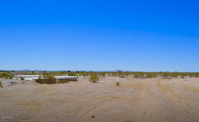 31232 W Blue Sky Way, Buckeye, AZ 85326 (MLS #6036304) :: Kepple Real Estate Group