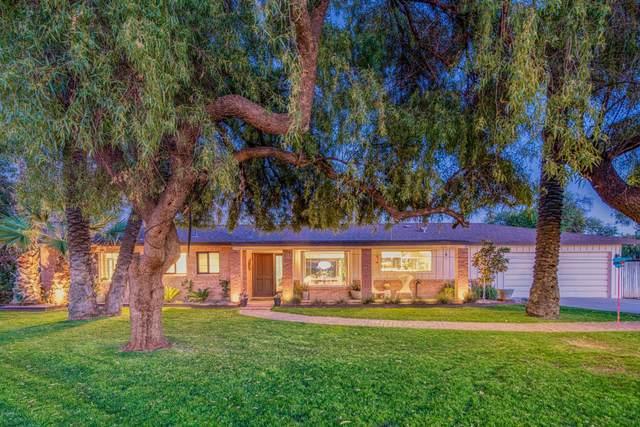 8531 N 10TH Avenue, Phoenix, AZ 85021 (MLS #6036346) :: Brett Tanner Home Selling Team