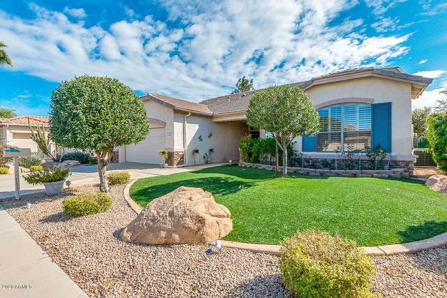 17779 W Holly Drive, Surprise, AZ 85374 (MLS #6036381) :: The Garcia Group