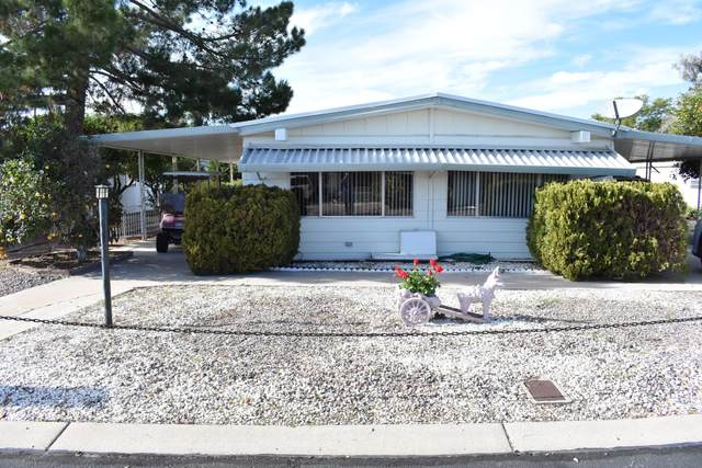 8264 E Dutchman Drive, Mesa, AZ 85208 (MLS #6036410) :: Brett Tanner Home Selling Team