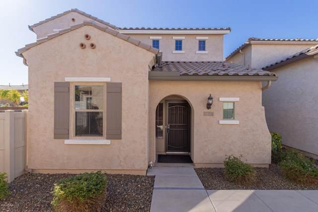 26681 N Babbling Brook Drive, Phoenix, AZ 85083 (MLS #6036526) :: RE/MAX Desert Showcase