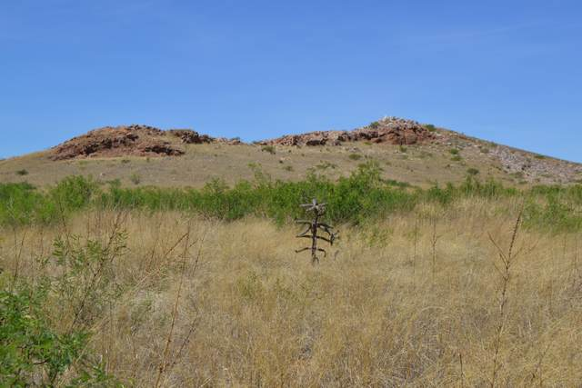 Tbd 40 Ac Ash Creek Ranches, Elfrida, AZ 85610 (MLS #6036538) :: neXGen Real Estate