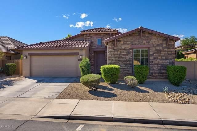 18451 W Lavender Lane, Goodyear, AZ 85338 (MLS #6036575) :: Nate Martinez Team