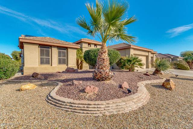 15760 W Autumn Sage Drive, Surprise, AZ 85374 (MLS #6036577) :: Brett Tanner Home Selling Team
