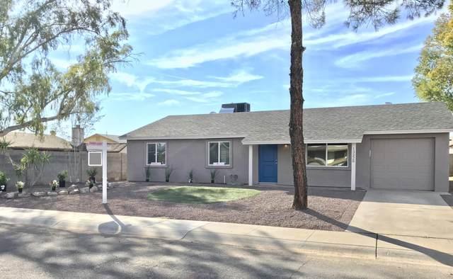 13228 N 38TH Street, Phoenix, AZ 85032 (MLS #6036610) :: Brett Tanner Home Selling Team