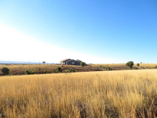 TBD E Renegade Trail, Hereford, AZ 85615 (MLS #6036616) :: Scott Gaertner Group