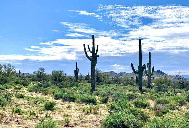 6975 E Grand View Lane, Apache Junction, AZ 85119 (MLS #6036638) :: Relevate | Phoenix