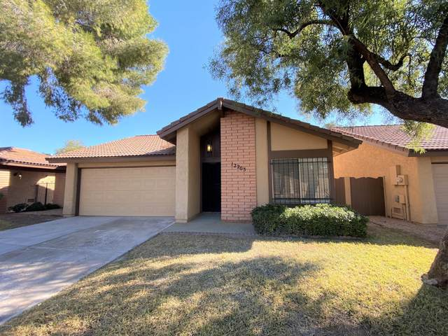 12205 S Paiute Street, Phoenix, AZ 85044 (MLS #6036654) :: Russ Lyon Sotheby's International Realty