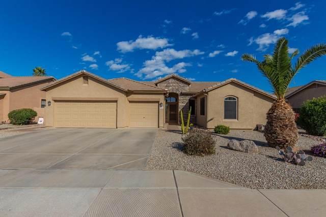 10256 E Pantera Avenue, Mesa, AZ 85212 (MLS #6036679) :: Conway Real Estate