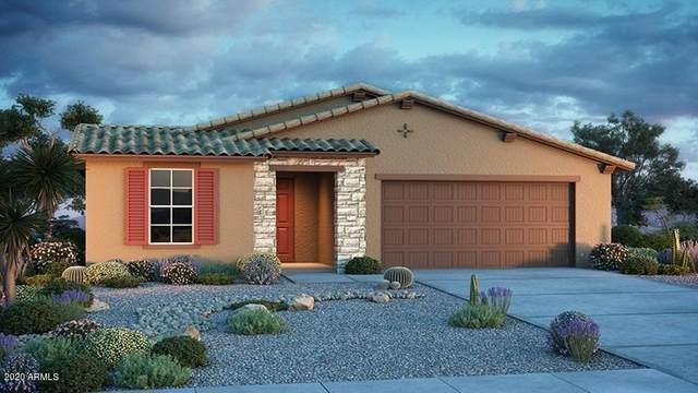17411 W Andora Street, Surprise, AZ 85388 (MLS #6036694) :: Sheli Stoddart Team | M.A.Z. Realty Professionals