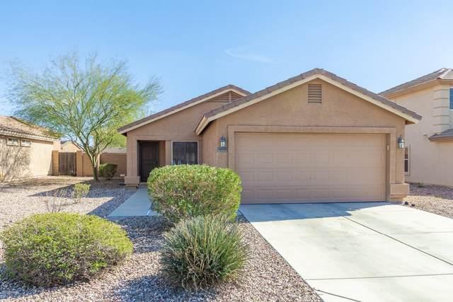 22625 W Tonto Street, Buckeye, AZ 85326 (MLS #6036696) :: Riddle Realty Group - Keller Williams Arizona Realty