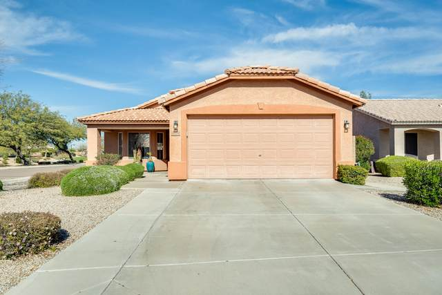 9374 W Runion Drive, Peoria, AZ 85382 (MLS #6036698) :: The Property Partners at eXp Realty