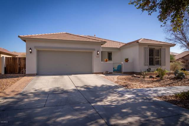 15053 N 136TH Court, Surprise, AZ 85379 (MLS #6036755) :: Conway Real Estate
