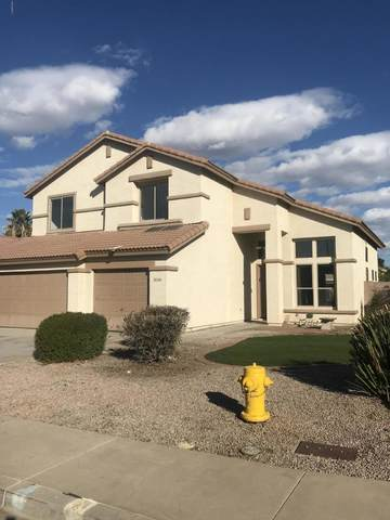 3364 E Jacinto Avenue, Mesa, AZ 85204 (MLS #6036783) :: Lucido Agency