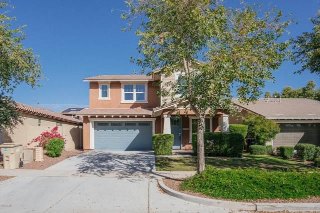 20700 W Delaney Drive, Buckeye, AZ 85396 (MLS #6036821) :: Cindy & Co at My Home Group