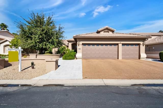 15570 W Fairmount Avenue, Goodyear, AZ 85395 (MLS #6036862) :: Devor Real Estate Associates