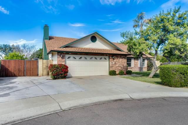 8626 W Saint John Road, Peoria, AZ 85382 (MLS #6036874) :: Conway Real Estate