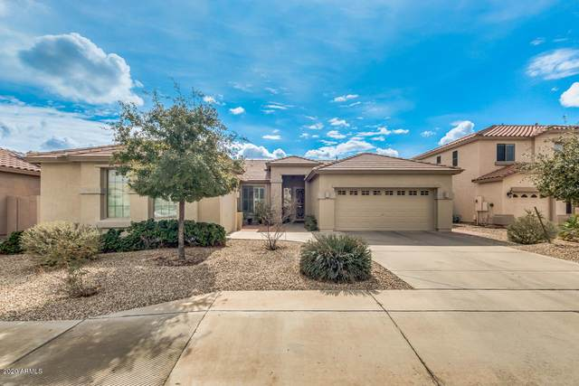 13567 W Montebello Avenue, Litchfield Park, AZ 85340 (MLS #6036896) :: Conway Real Estate