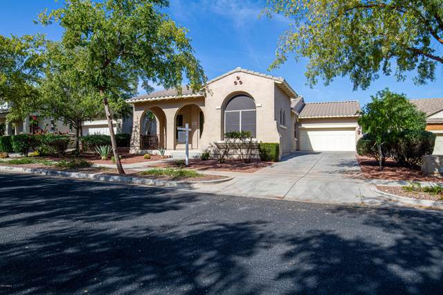 3934 N Kibbey Court, Buckeye, AZ 85396 (MLS #6036934) :: Devor Real Estate Associates