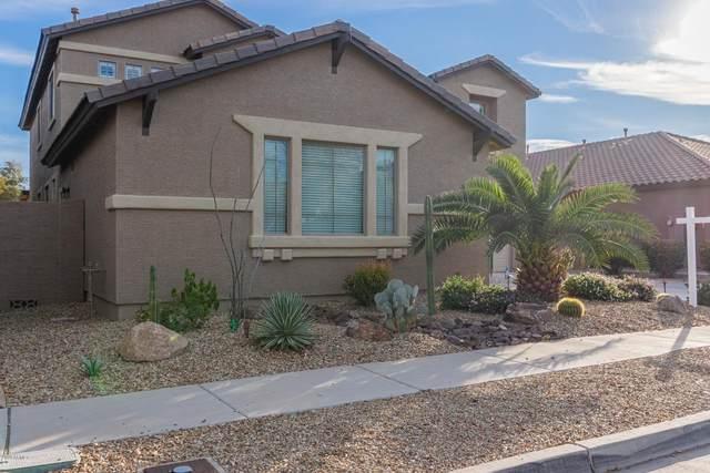 14517 W Desert Hills Drive, Surprise, AZ 85379 (MLS #6036945) :: Conway Real Estate