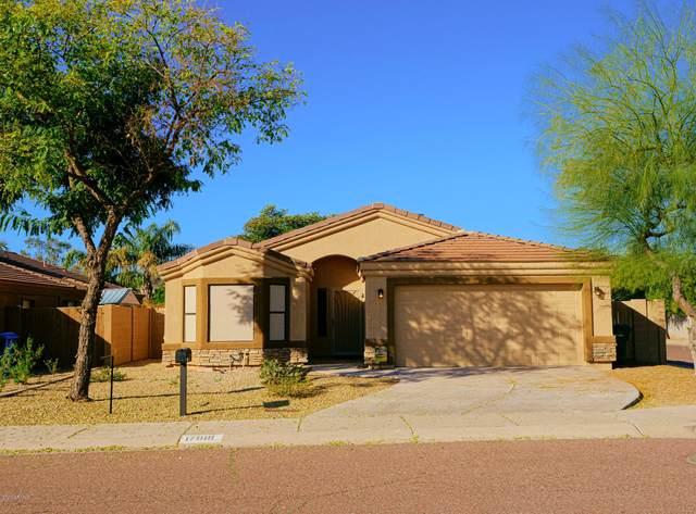 17818 N 41ST Place, Phoenix, AZ 85032 (MLS #6036971) :: Cindy & Co at My Home Group