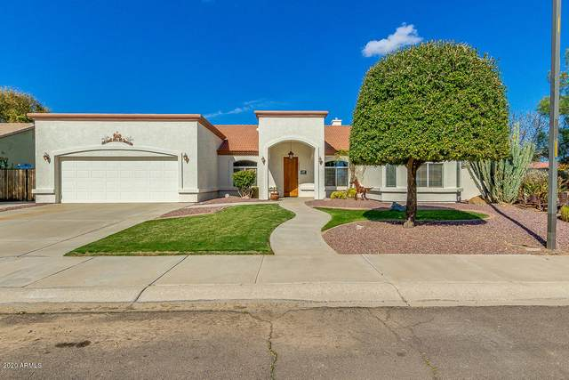 20496 E Colt Drive, Queen Creek, AZ 85142 (MLS #6036985) :: Lucido Agency