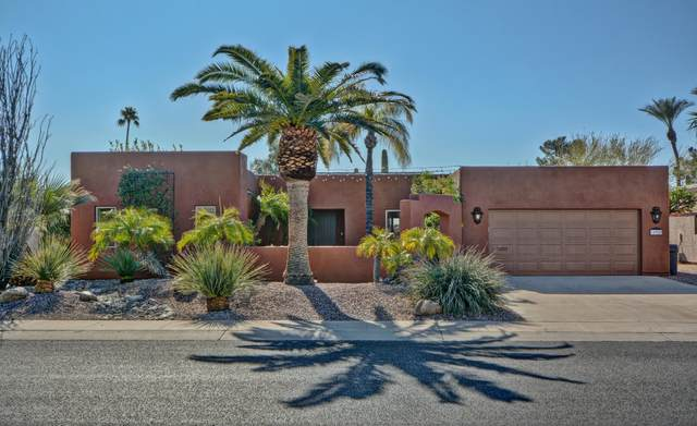 10929 W Hutton Drive, Sun City, AZ 85351 (MLS #6037019) :: Dave Fernandez Team | HomeSmart