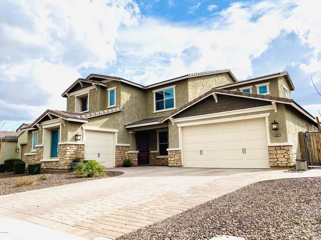 3889 E Chestnut Lane, Gilbert, AZ 85298 (MLS #6037041) :: Santizo Realty Group